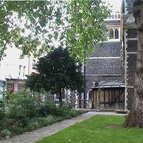 St Bartholomew's 3 trees