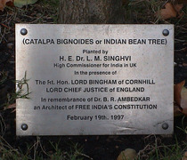 B R Ambedkar - tree