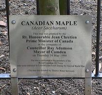 Royal Canadian Air Force  - WW2 HQ, Tree, 1998