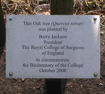 Bicentenary of the Royal College of Surgeons