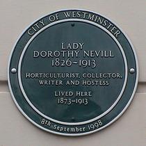 Dorothy Nevill