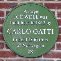 Gatti icehouse
