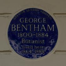 George Bentham