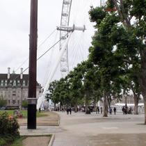 Festival of Britain - Flagpole & Skylon