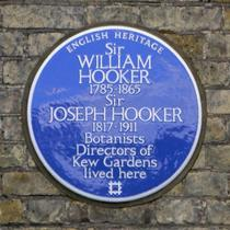 Sir Joseph and Sir William Hooker