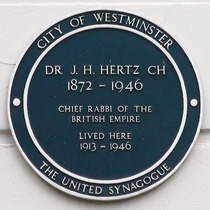 Rabbi Hertz
