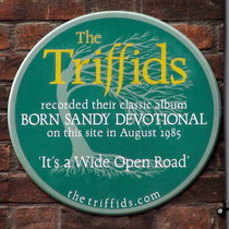 The Triffids