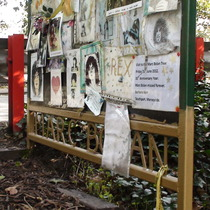 Marc Bolan shrine - noticeboard