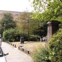 Burney Street Garden Project
