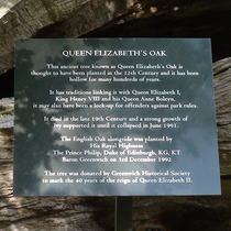 Queen Elizabeth's Oak