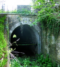 Clarendon Arch