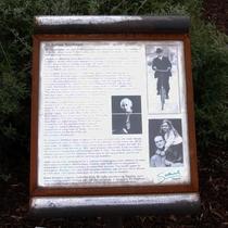 Doctor Alfred Salter - SE16 plaque