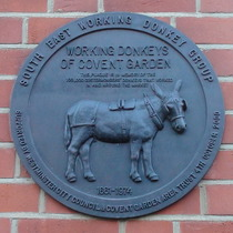 Covent Garden donkeys