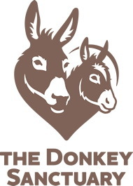 South East Working Donkey Group