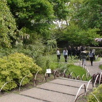 Japanese Garden - Holland Park
