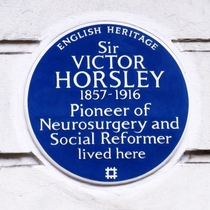 Sir Victor Horsley