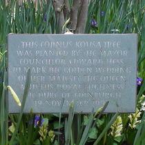 Kensington Town Hall - Royal Golden Wedding