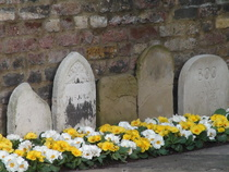 Gravestones in Launceston Place