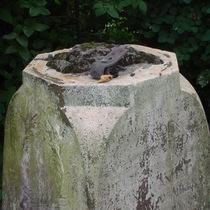 Jacqueline Cockburn - missing sculpture - plinth