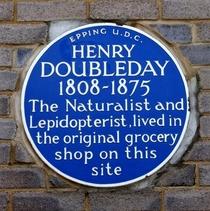 Henry Doubleday