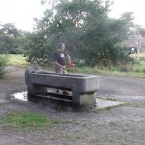 Devas drinking trough