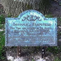 Coronation of King Edward VII - tree