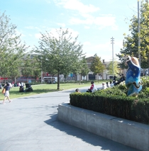 Woolwich tree memorials and Buddy Bear