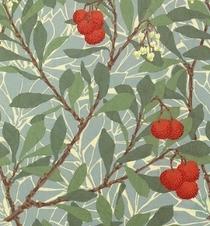 William Morris Company