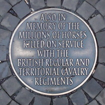 Animals in war - horses