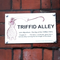 Triffid Alley