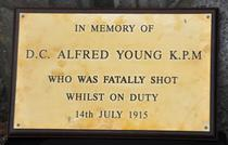 Alfred Young