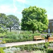 Camberwell WW1 victims - Chumleigh Gardens