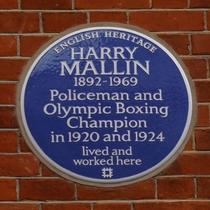 Harry Mallin