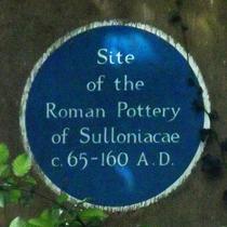 Sulloniacae