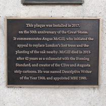 Angus McGill