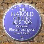 Sir Harold Gillies