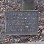 Simon Lowe tree