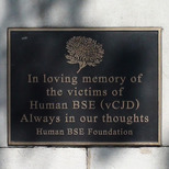 Victims of Human BSE