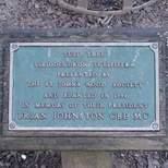 Brian Johnston tree