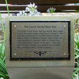 Susan Daniel Rose Bed