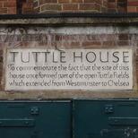 Tachbrook - Tuttle