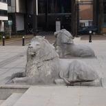 Imperial Institute lions