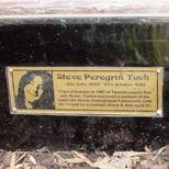 Marc Bolan shrine - plaque - Took
