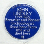 John Lindley