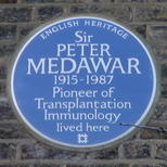 Sir Peter Medawar plaque
