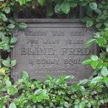 Blind Fred