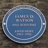 James D. Watson