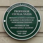 Professor Cecília Vajda