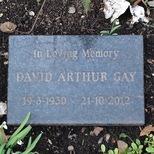 David Arthur Gay