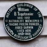 William Tegetmeier